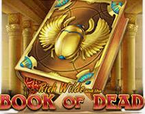 slot online book of dead rich wilde